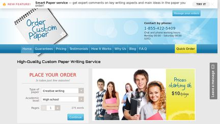 critical essay writing company